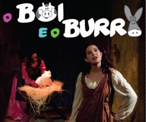 boi_burro